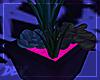 !D Succulents