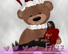 Christmas Teddy Port. M