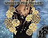 Golden Hip Roses