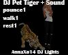 DJ Pet Tiger + Sound