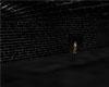 Cellar ADD ON