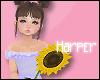 Sunflower w/Poses
