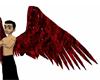 Dark Red/Black Wings