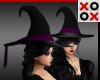 Black & Purple Witch Hat