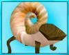 Sea Shell Chair