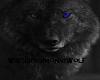 Wolf* Me an My Sissy Z