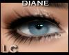 LC Diane Bar Eye Liner
