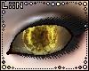 LiiN Universe Sol