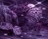 purple lycan