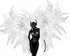 Big White Wings