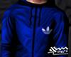 Fall Coat Sport Blue