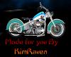My RavenRadio Bike