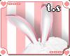 *ts* Bunny Ears [Pk]