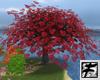 ~F~ My Love Grows ~Tree