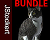 AP Grey Tabby BUNDLE
