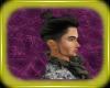 UpDoPonytail*DARIO*-BlK