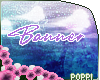‽Banner | Support