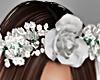 BabyBreath - Roses Crown