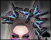 Cat~ Butterfly Monarch
