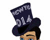 2014 New Years hat