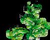 Green Leaves -R