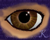 Earth Jasper Eyes M