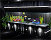 ~PS~ Club Drais Aquarium