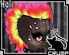 [C] Colpop v.3 Hair