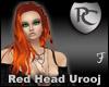 Red Head Urooj