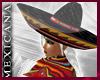 [V4NY] !Mexicana! Platin