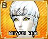 !T Mitsuki hair v2