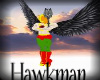 Hawkmans boots