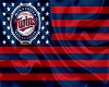 Minnesota Twins Flag