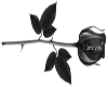Stiker Black Rose Love