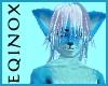 Blue Fox Skin (M)