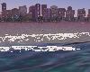 (F) Miami Beach