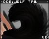 v. Dog/Wolf Tail: Coal