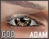 {G} Adam Lashes Black