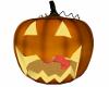 Couple Pumpkin Cuddle