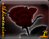 Gothic Valentine Rose