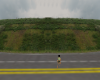 [DRC] Roadside Insert