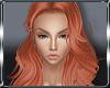 |MH| Conrad Ginger Spice