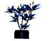 Blue ExoticPlant[DK]
