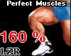 Muscles Legs *PT 160%