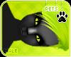 [Pets] Alsa | hair v8