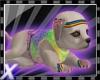 Silverx pup rainbow fit
