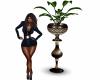 Phoenix Vase & Plant