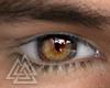 ◮ Marron Eyes  f/mesh