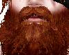 Base moustache