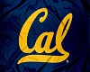 Cal Golden Bears Flag